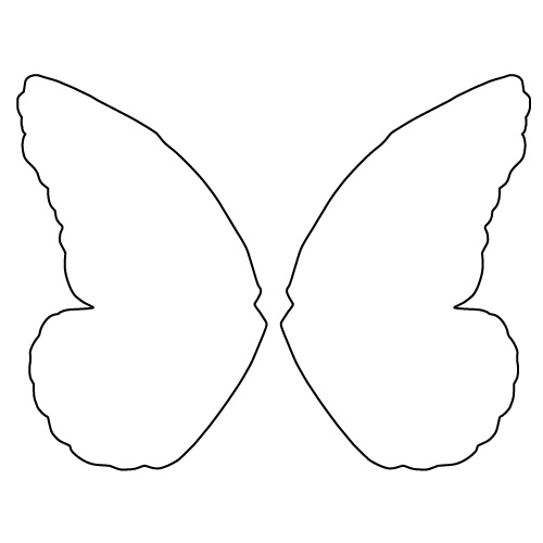 butterfly wings chablon
